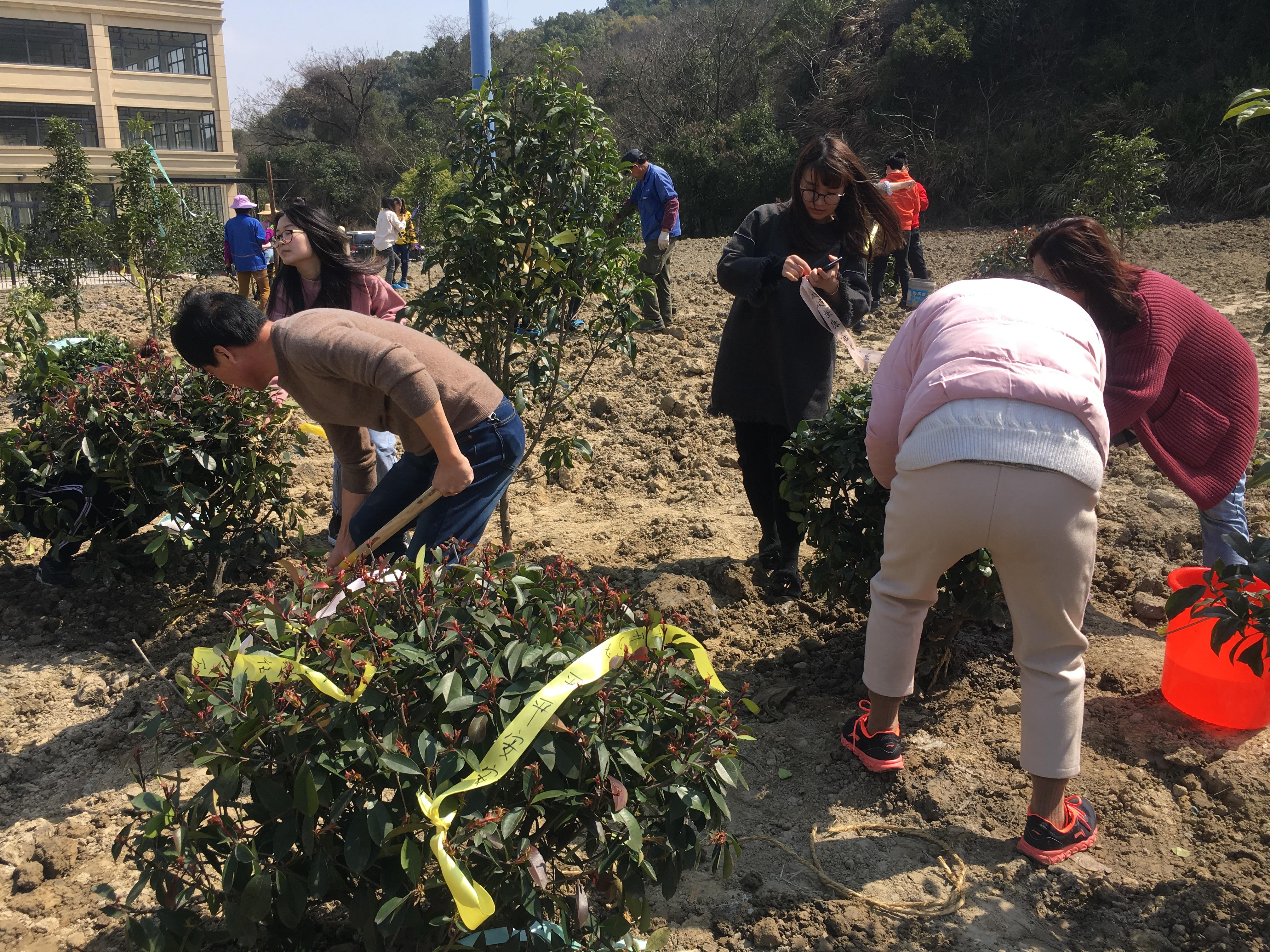 公司部分员工参加植树造林活动(en)